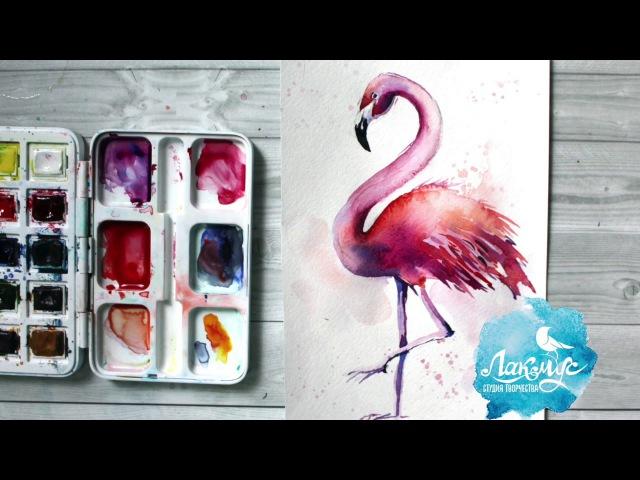 Как нарисовать фламинго акварелью. 365 арт дней. День 6