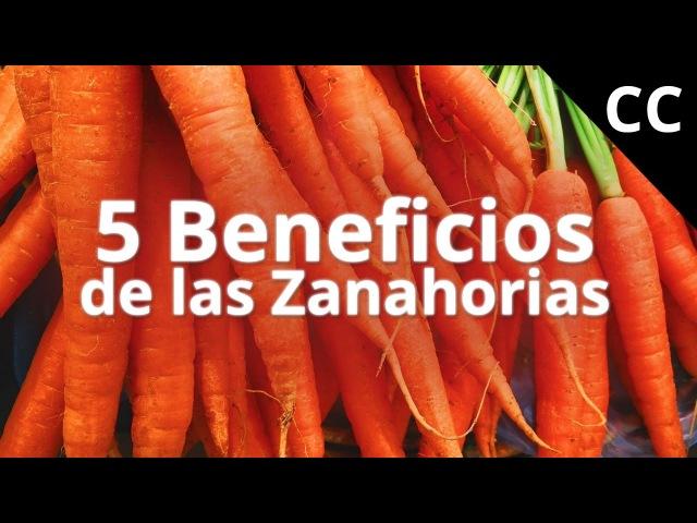 5 Beneficios de las Zanahorias | Ciencia de la Comida