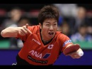 Jun Mizutani vs Niagol Stoyanov Champions League 2017 2018