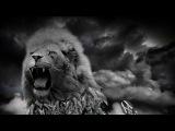 Legenda Folium feat Fenoman - Eleven (official lyrics video)