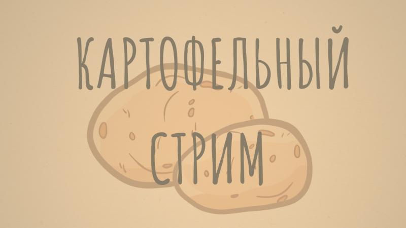 38 минут просмотра картошки под радио BingoPrometheus