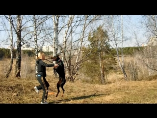 Красные.Татьяна Анохина Вега. 3 осн.+ доп. (вне зачёта)))