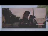 Darnell Williams - Coney Island