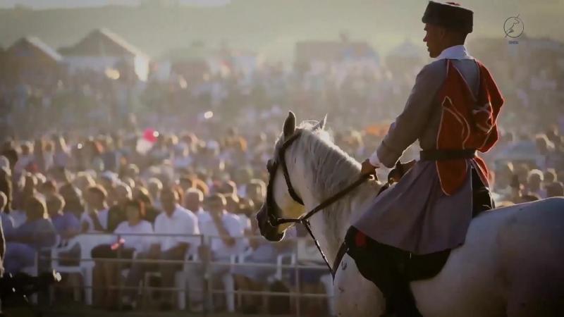 Фестиваль казачьей культуры и традиций