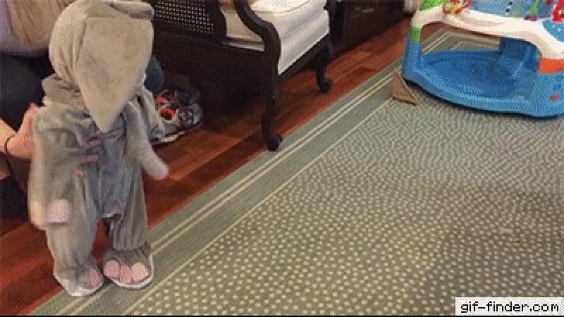 Doggo-meets-baby-elephant