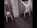 Фитнес семьей