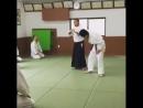 Shihan Tsuneo Ando 8 dan Aikido Yoshinkan president Ryu World Aikido Federation