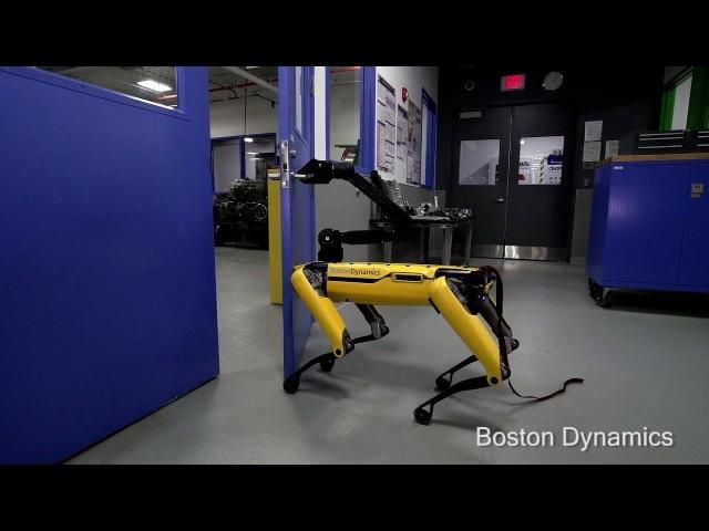 Boston Dynamics учит своего четвероногого робота не сдаваться