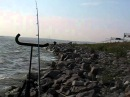 финский залив дамба рыбалка на фидер