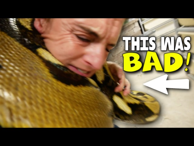 VERY SCARY MOMENTS WITH A 20 FOOT SNAKE!! (SERIOUSLY) Brian Barczyk