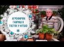 Семена 2018 видео обзор новых сортов. Агрофирма ГАВРИШ в гостях у HitsadTV