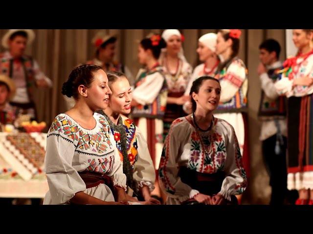 Юбилейный концерт народного хора ансамблей и солистов. 1 ноября 2017.