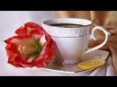 Утренний кофе VLOG 14 РИККОНА Роскошь Ирландского кружева Котельниковой Натальи
