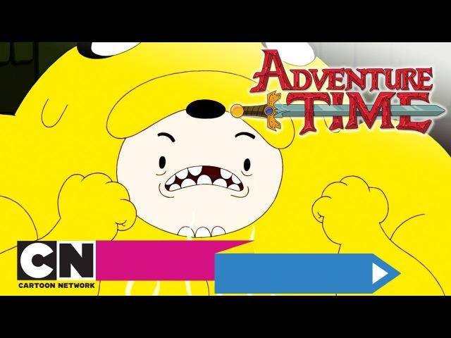 Время приключений | Костюм из Джейка Быть чем-то большим (серия целиком) | Cartoon Network