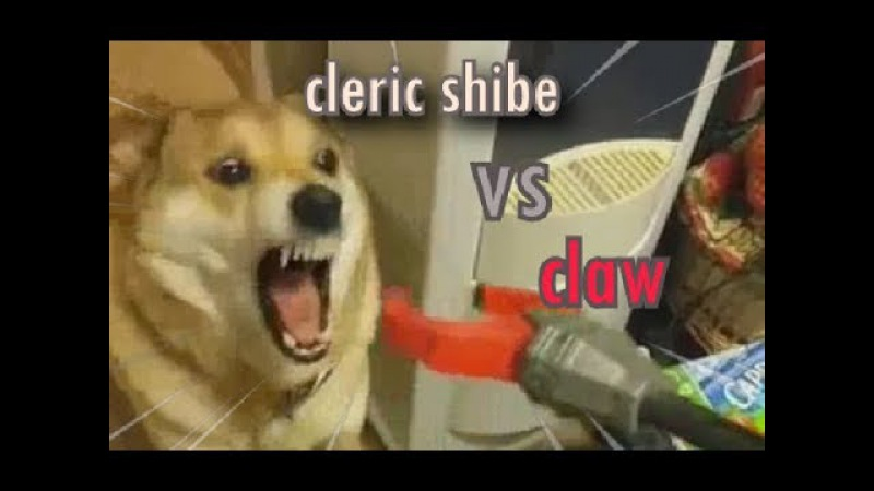 Cleric shibe (shibeborne)