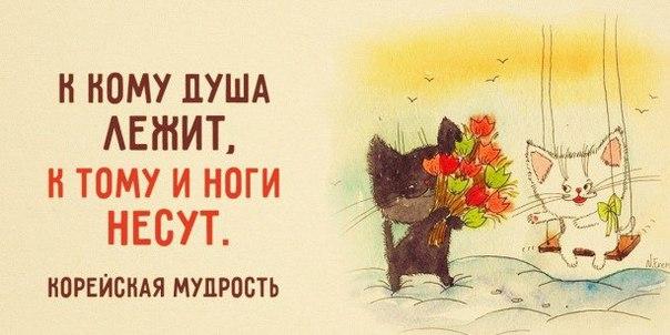 Фото №456246898 со страницы Людмилы Хомяковой