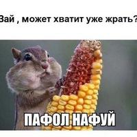 Анкета Мер Серов