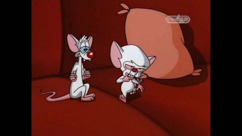 Пинки и Брейн 3.42-43 (78,79) Очередь Пинки Your Friend: Global Domination / Ваш друг: мировое господство Pinky and the Brain