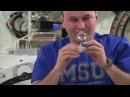 Космический урок с борта МКС