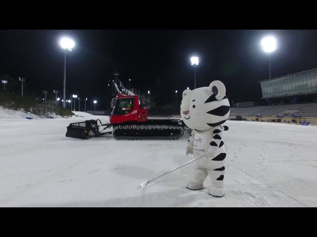 (KOR) 마스코트 이야기 8 The life of PyeongChang 2018 Mascots 8