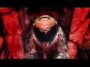 You Will Be Worse DOOM Opening Sequence