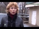Эфир программы НТВ Очная Ставка от 19 мая 2013 года, Городские банды.