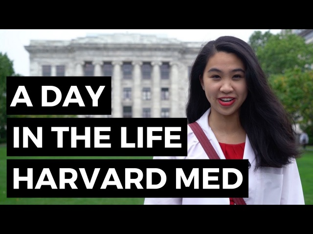 A Day in the Life Harvard Medical School Student