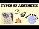 TYPES OF AESTHETIC How to be Aesthetic (Find yours)