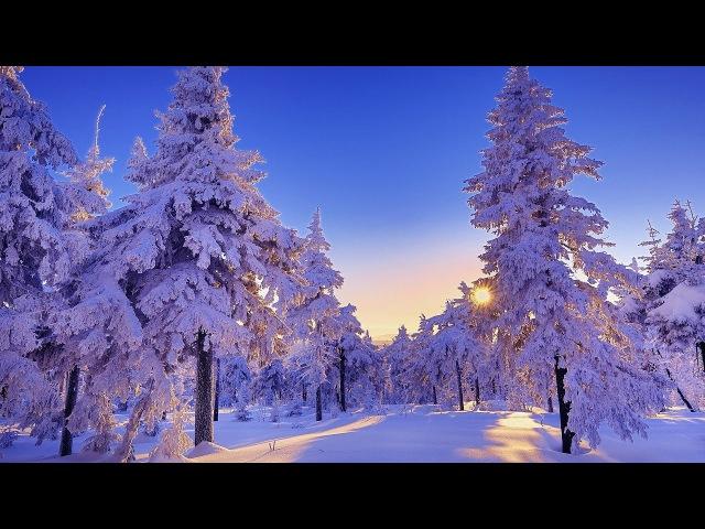 Зимняя сказка Красивая мелодия для души! Дмитрий Метлицкий Зимний вальс/The Best music