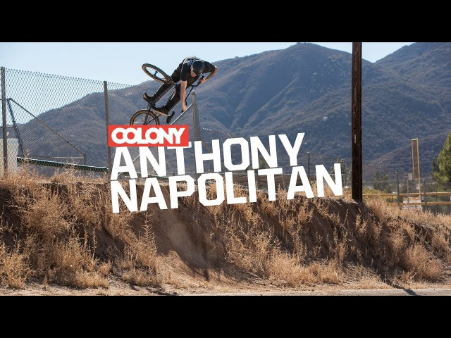 Anthony Napolitan - Colony BMX