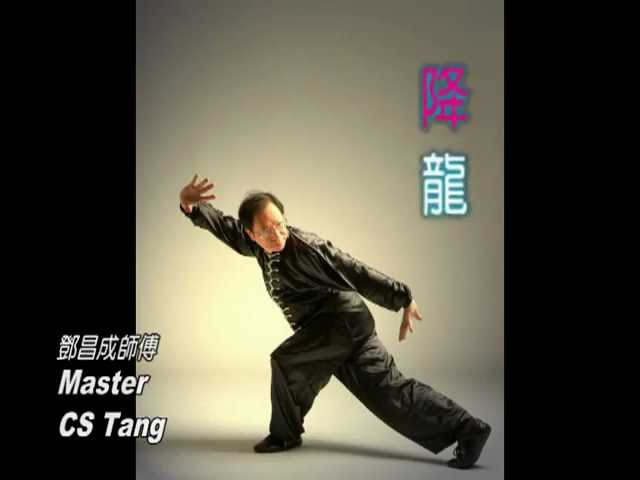Yiquan course - Dragon stance application 03 降龍樁用法- CS Tang