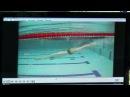 25-09-2017 - Контроль и оценка технического мастерства пловцов на примере видеозаписей