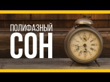 Полифазный сон [Якорь | Мужской канал]