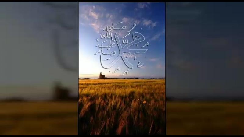 йа Хьабиби🌹йа Мухьаммад 🌹