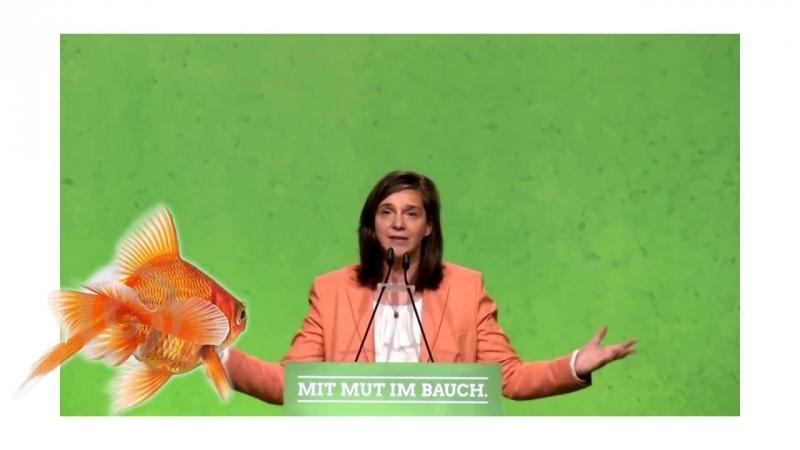 Katrin Göring Eckardt ( Grüne ) Unser Land wird sich ändern und zwar drastis.mp4