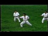 Хейан Шодан Бункай - Heian Shodan Bunkai