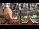 Как определить кислотность почвы с помощью PH-метра AS218
