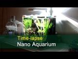nano aquarium-timelapse - Setting up a planted nano aquascape