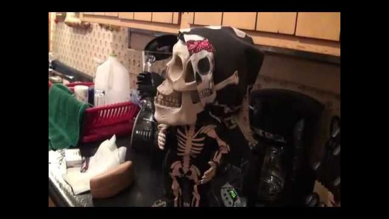 Toy Skeleton haunted and possessed - This Is Demonic Crazy