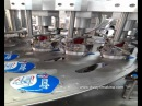 YOĞURT ,AYRAN DOLUM MAKİNESİ -YOGURT FILLING MACHINE (
