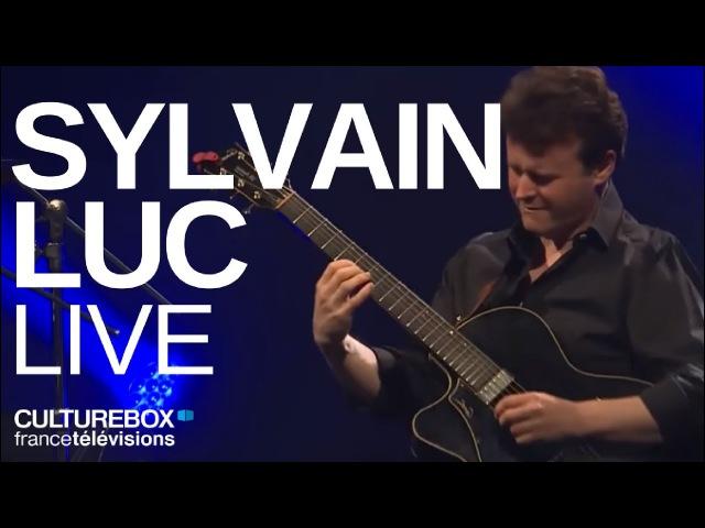 Sylvain Luc (full concert) - Live @ Jazz sous les pommiers 2015