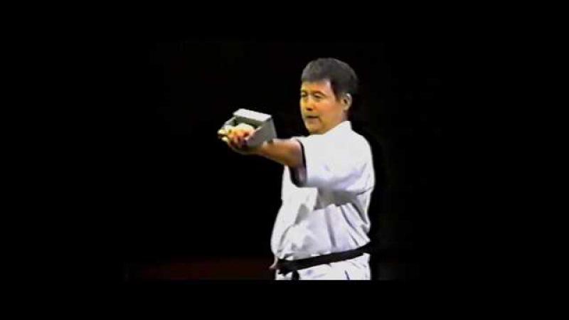 Годзю-рю. Тренировка с гирями иши саши