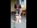 дровасек с тупичком