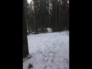 Михаил Вахрушев - Live