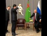 Президент Туркмении подарил Владимиру Путину щенка алабая.