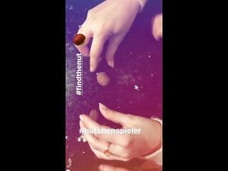 Gustav Schäfer Instagram Stories (11.01.2018): Найди орех 🌰