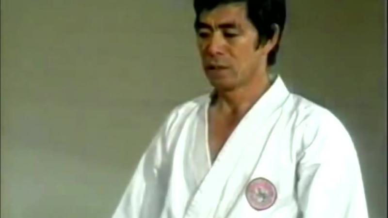 Kanazawa Sensei Basic Shotokan 2