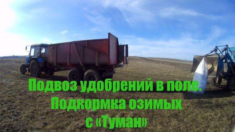 Подвоз удобрений в поле на МТЗ-82.1