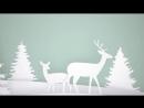 Видеосъёмка новогоднего утренника в детском саду