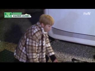 boo seungkwan's life is a sitcom